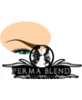 PERMA BLEND eyebrows