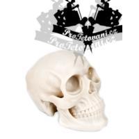 Super realistic skull full size SILICONE