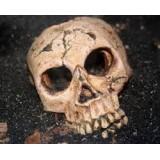 Morbidní DNA tetování